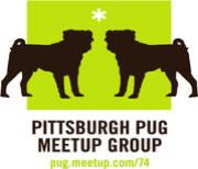 Visit Pittsburgh Pug Meet Up Group